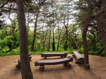 Θέση για τη χαλάρωση στη δασική Σεούλ, Νότια Κορέα στοκ εικόνες
