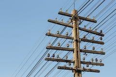 Θέση ηλεκτρικής ενέργειας Στοκ Εικόνα