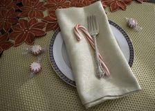 Θέση που θέτει με το δίκρανο πετσετών πιάτων και τον κάλαμο καραμελών στοκ φωτογραφία με δικαίωμα ελεύθερης χρήσης