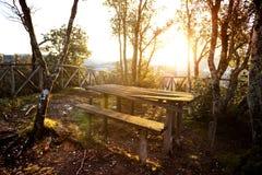 Θέση που χαλαρώνει στα ξύλα Στοκ φωτογραφία με δικαίωμα ελεύθερης χρήσης