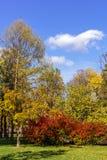Θέση σε ένα ήρεμο πάρκο πόλεων στοκ εικόνα