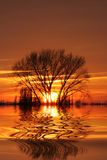 θέτοντας ήλιος Στοκ εικόνες με δικαίωμα ελεύθερης χρήσης