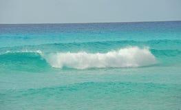 θέτοντας τροπικά κύματα Στοκ Εικόνες