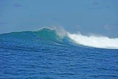 θέτοντας τροπικά κύματα Στοκ φωτογραφία με δικαίωμα ελεύθερης χρήσης