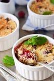 Θίχουλο με τα μούρα, oatmeal και τα καρύδια Στοκ Φωτογραφίες