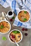 Θίχουλο με τα μούρα, oatmeal και τα καρύδια Στοκ εικόνες με δικαίωμα ελεύθερης χρήσης