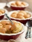 Θίχουλο μπισκότων της Apple Στοκ Εικόνες