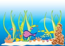 θαλάσσια θάλασσα ζωής απεικόνιση αποθεμάτων