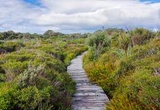 Θαλάσσιος περίπατος στο όμορφο τοπίο υγρού εδάφους στοκ φωτογραφίες με δικαίωμα ελεύθερης χρήσης