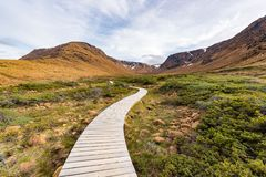 Θαλάσσιος περίπατος στο Tablelands του εθνικού πάρκου Gros Morne, νέα γη Στοκ Εικόνα