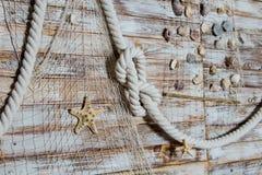 Θαλάσσιο δίκτυο με τα θαλασσινά κοχύλια στον τοίχο Στοκ Φωτογραφία