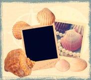 θαλάσσιο πρότυπο λευκώμ& Στοκ Εικόνες