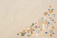 Θαλασσινά κοχύλια στην άμμο Υπόβαθρο θερινών διακοπών θάλασσας με το διάστημα για το κείμενο στοκ εικόνες