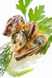 θαλασσινά μυδιών Στοκ φωτογραφία με δικαίωμα ελεύθερης χρήσης