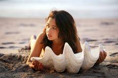 θαλασσινό κοχύλι κοριτ&sigma Στοκ Εικόνες