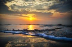 Θαλασσινό κοχύλι στην παραλία στοκ εικόνα