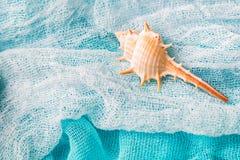 Θαλασσινό κοχύλι στο cian υπόβαθρο υφασμάτων στενό Στοκ Φωτογραφίες