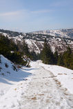 Θαμμένος στο ίχνος πεζοπορίας χιονιού στοκ φωτογραφία με δικαίωμα ελεύθερης χρήσης