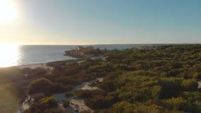 Θαμνώδης παραλία στο υπόβαθρο της θάλασσας και του μπλε ουρανού Τέχνη Τοπ άποψη της όμορφης παραλίας με τους πράσινους Μπους και  στοκ εικόνα