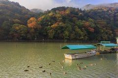 Θαυμάσια άποψη, χρώμα πτώσης σε Arashiyama, Ιαπωνία το φθινόπωρο Στοκ Εικόνες