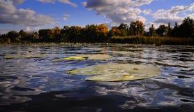 Θαυμάσια λίμνη φθινοπώρου στοκ φωτογραφίες με δικαίωμα ελεύθερης χρήσης