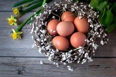 Θαυμάσια φωλιά με τα αυγά Πάσχας σε ένα ανοικτό γκρι ξύλινο υπόβαθρο Στοκ φωτογραφίες με δικαίωμα ελεύθερης χρήσης