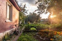 Θαυμάσια flowerbeds στο εξοχικό σπίτι μου Στοκ Εικόνα