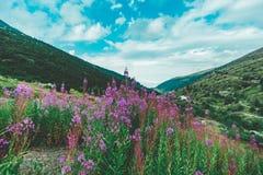 Θαυμάσιες απόψεις των βουνών Pirin στοκ εικόνες
