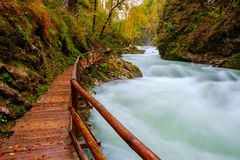 Θαυμάσιος ποταμός φαραγγιών Vintgar curlicue και όμορφα χρώματα Στοκ φωτογραφία με δικαίωμα ελεύθερης χρήσης