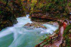 Θαυμάσιος ποταμός φαραγγιών Vintgar curlicue και όμορφα χρώματα Στοκ Εικόνες