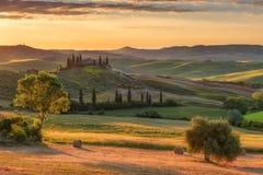 Θαυμάσιο αγροτικό τοπίο άνοιξη Ζαλίζοντας άποψη των tuscan πράσινων λόφων κυμάτων, του καταπληκτικού φωτός του ήλιου, των όμορφων Στοκ Φωτογραφία