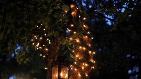 Θαυμάσιο βίντεο β-ρόλων ενός δέντρου με τη γιρλάντα και των φαναριών στη νύχτα σε έναν κήπο απόθεμα βίντεο