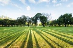 Θαυμάσιο και συναρπαστικό πράσινο τοπίο πάρκων το πρωί Στοκ εικόνες με δικαίωμα ελεύθερης χρήσης