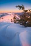 Θαυμάσιο κρύο πρωί Στοκ Φωτογραφία