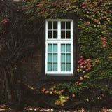 Θαυμάσιο παράθυρο Στοκ Φωτογραφίες