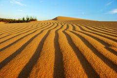 Θαυμάσιο τοπίο για το ταξίδι του Βιετνάμ, λόφος άμμου Bau Trang Στοκ Εικόνες