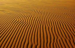 Θαυμάσιο τοπίο για το ταξίδι του Βιετνάμ, λόφος άμμου Bau Trang Στοκ φωτογραφίες με δικαίωμα ελεύθερης χρήσης