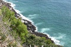 Θαυμάσιο τοπίο με πολλές σφραγίδες στο ίχνος πεζοπορίας στην επιφύλαξη φύσης Robberg στον κόλπο Plettenberg, Νότια Αφρική στοκ εικόνα με δικαίωμα ελεύθερης χρήσης