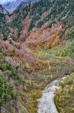 Θαυμάσιο τοπίο φθινοπώρου του ζωηρόχρωμου φυλλώματος από το φράγμα Kurobe Στοκ Φωτογραφίες