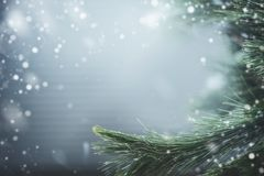 Θαυμάσιο χειμερινό υπόβαθρο με τους κλάδους και το χιόνι έλατου Χειμερινές διακοπές και Χριστούγεννα στοκ εικόνα