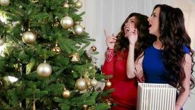 Θαύμα Χριστουγέννων, όμορφη, κομψή γυναίκα κοντά στο χριστουγεννιάτικο δέντρο, γέλιο, ενθουσιωδώς που εξετάζει ένα δέντρο, α απόθεμα βίντεο