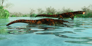 Θαλάσσια ερπετά Uberabasuchus Στοκ φωτογραφία με δικαίωμα ελεύθερης χρήσης