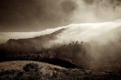 Θαλάσσια ομίχλη - κομητεία του Marin Στοκ Εικόνες