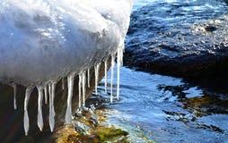 Θαλάσσια παγάκια Στοκ φωτογραφία με δικαίωμα ελεύθερης χρήσης