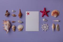 Θαλάσσια πρόσκληση με τα αστέρια θάλασσας Στοκ Εικόνες