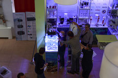 Θαλάσσια συνάντηση aquarists Στοκ Φωτογραφίες