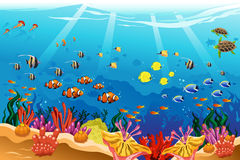 Θαλάσσια υποβρύχια σκηνή Στοκ Εικόνες