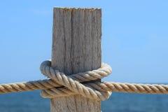 Θαλάσσιος κόμβος του κόμβου και ενός κομματιού του ξύλου Στοκ εικόνες με δικαίωμα ελεύθερης χρήσης
