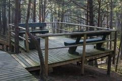 Θαλάσσιος περίπατος στο δάσος Στοκ εικόνες με δικαίωμα ελεύθερης χρήσης