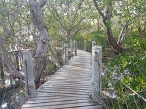 Θαλάσσιος περίπατος Tanjay Στοκ φωτογραφίες με δικαίωμα ελεύθερης χρήσης